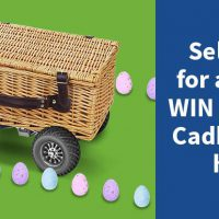 we want any car easter competition