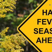 tips from IAM RoadSmart about driving with hay fever